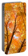 In The Autumn Mood  Portable Battery Charger