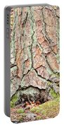 In The Forest Art Series - Tree Bark Patterns 1  Portable Battery Charger
