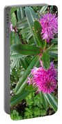 Hebe Bush In The Garden Portable Battery Charger