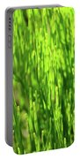 In The Green Portable Battery Charger