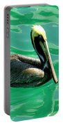 In The Green Zone Portable Battery Charger