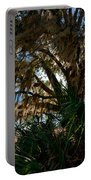 In The Shade Of A Florida Oak Portable Battery Charger
