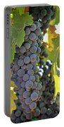 In The Vineyard Portable Battery Charger by Nancy Ingersoll