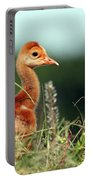 In The Weeds  Portable Battery Charger