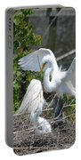 In The Wild White Snowy Egrets Photography ....photo A Portable Battery Charger