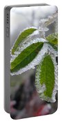 In The Winter Sunlight Portable Battery Charger