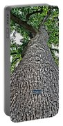Independence Tree Portable Battery Charger