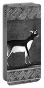 India: Black Buck Portable Battery Charger