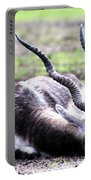 Indian Antelope Portable Battery Charger