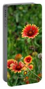 Indian Blanket Flower Portable Battery Charger