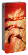 Indian Food Seasoning And Spices Portable Battery Charger