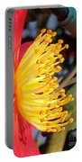 Indian Hawthorn Profile Portable Battery Charger