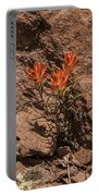 Indian Paintbrush At Bandelier Portable Battery Charger
