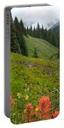Indian Paintbrush Window Into The San Juans Portable Battery Charger