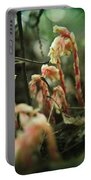 Indian Pipe 4 Portable Battery Charger