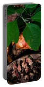 Indian Pipe 7 Portable Battery Charger
