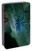Indigo Blue Weevil Portable Battery Charger