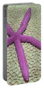 Indonesia, Pink Sea Star Portable Battery Charger
