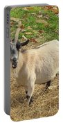 Inquisitive Goat Portable Battery Charger