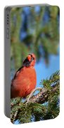 Inquisitive Male Cardinal Portable Battery Charger