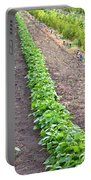 Intercropped Trees And Beans Portable Battery Charger