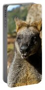 Interview With A Swamp Wallaby Portable Battery Charger