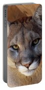 Into His Eyes Portable Battery Charger