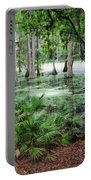 Into The Green Swamp Portable Battery Charger