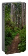 Into The Redwoods Portable Battery Charger