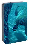 Into The Wild Blue Portable Battery Charger