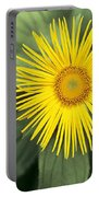 Inula Grandiflora Portable Battery Charger
