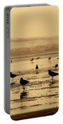Iquique Chile Seagulls  Portable Battery Charger
