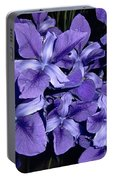 Iris At Night Portable Battery Charger