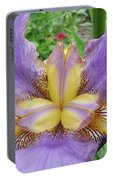 Iris Flower Lavender Purple Yellow Irises Garden 19 Art Prints Baslee Troutman Portable Battery Charger