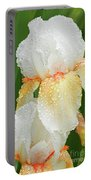 Iris In The Rain Portable Battery Charger