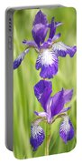 Iris Pair Portable Battery Charger