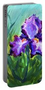 Iris Solo Portable Battery Charger