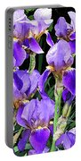 Iris Splendor Portable Battery Charger