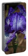 Iris Unraveled Portable Battery Charger