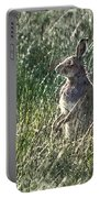 irish Hare Portable Battery Charger