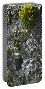 Irish Stone Flowers Portable Battery Charger