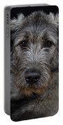 Irish Wolfhound Droc Vi Portable Battery Charger
