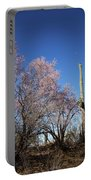 Ironwood And Saguaro Portable Battery Charger