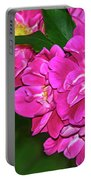 Irresistible Rose - Paint Portable Battery Charger