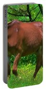 Irritated Horse Portable Battery Charger