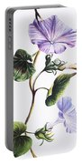Isabella Sinclair - Pohue Portable Battery Charger