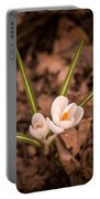Isolated Crocus Portable Battery Charger