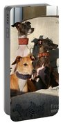 Italian Greyhounds Portable Battery Charger