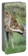 Itchy Fawn Portable Battery Charger