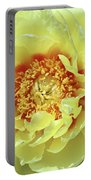 Itoch Peony  Portable Battery Charger